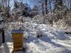 Carrie-Donley-Donley_Winter-scaled