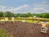 Blackwood Farm Apiary