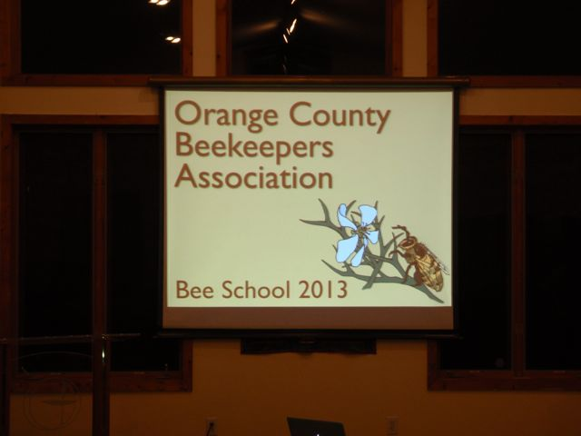 It's Bee School time again