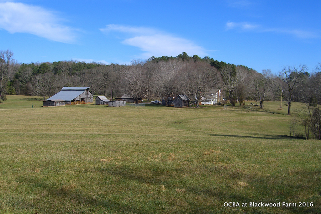 OCBA Demo Hives at Blackwood Farm Park 2