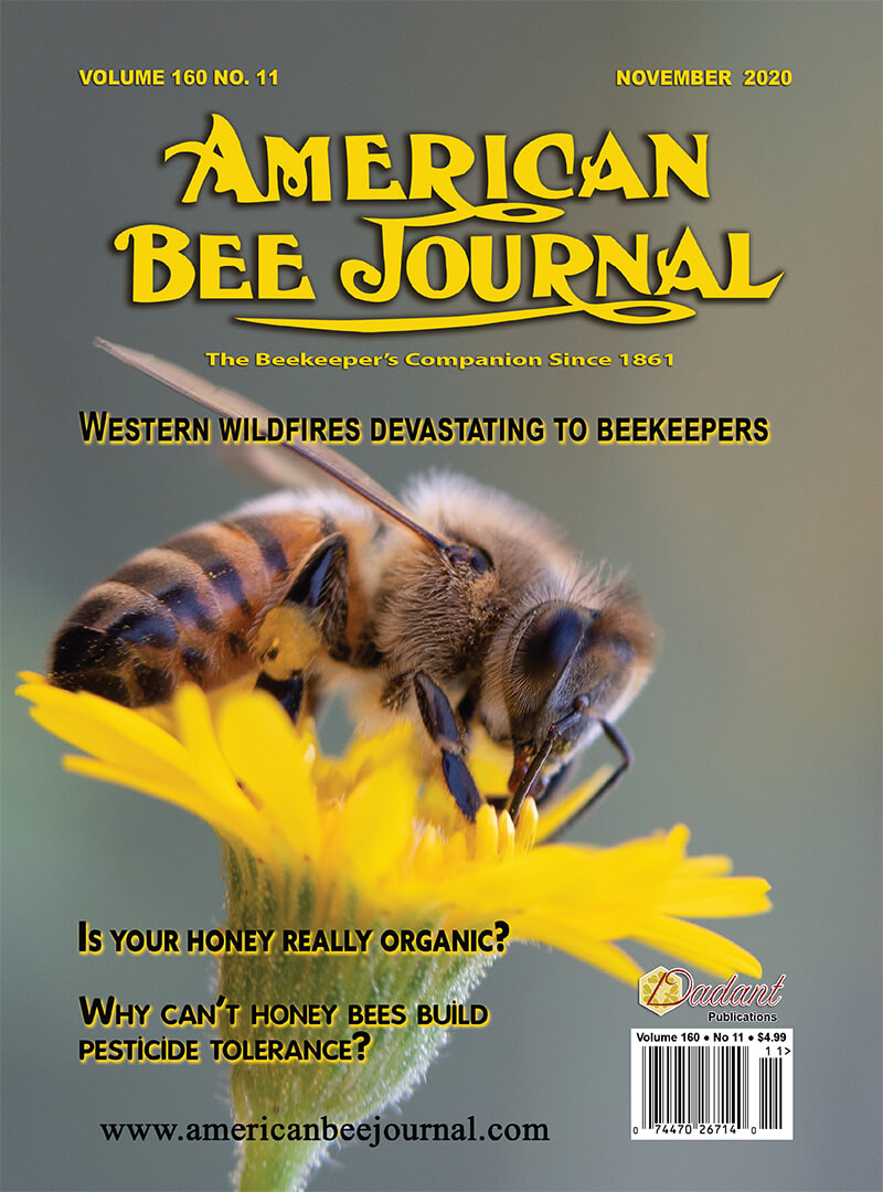 One-Year Subscription to American Bee Journal (#1)